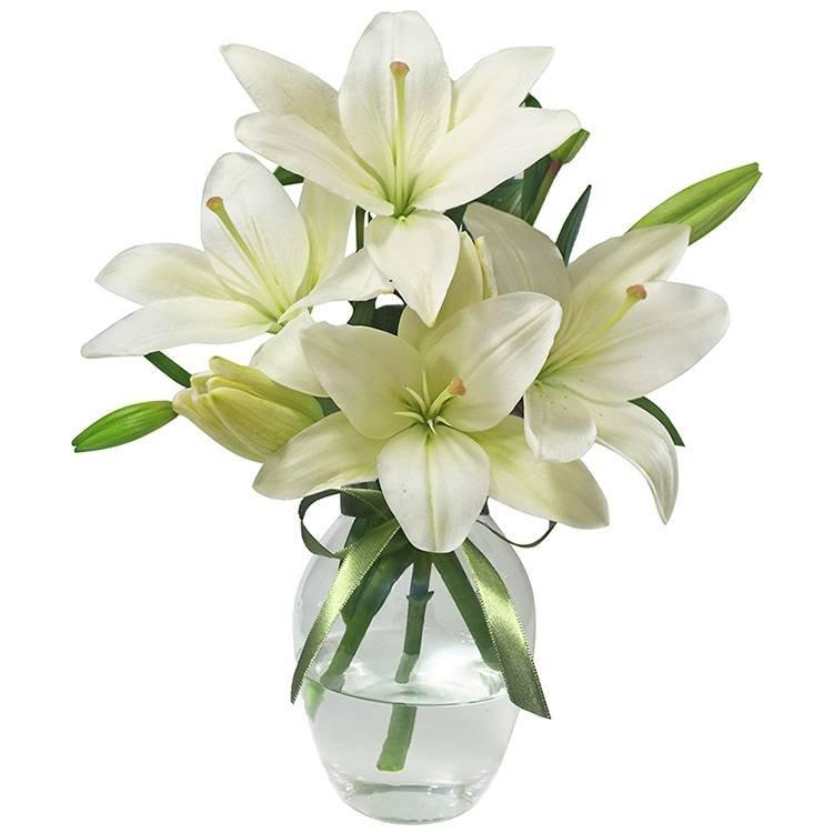 flores-para-quarto-lirios