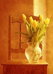 tulipas perto da janela com boa iluminacao