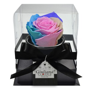 rosa-preservada-candy