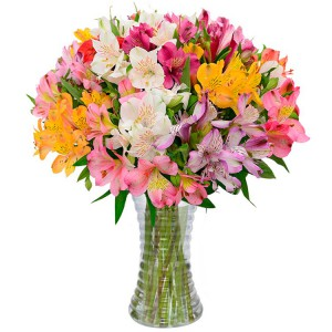 flores-que-estao-na-moda-astromelias