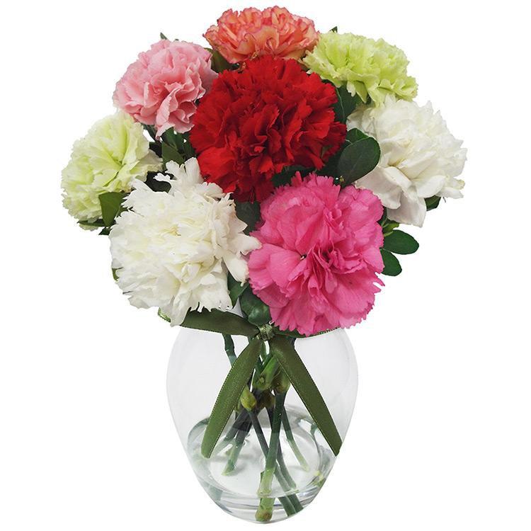 cravos-flores-que-viram-perfume