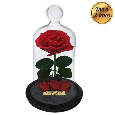 presentes de última hora como a rosa encantada
