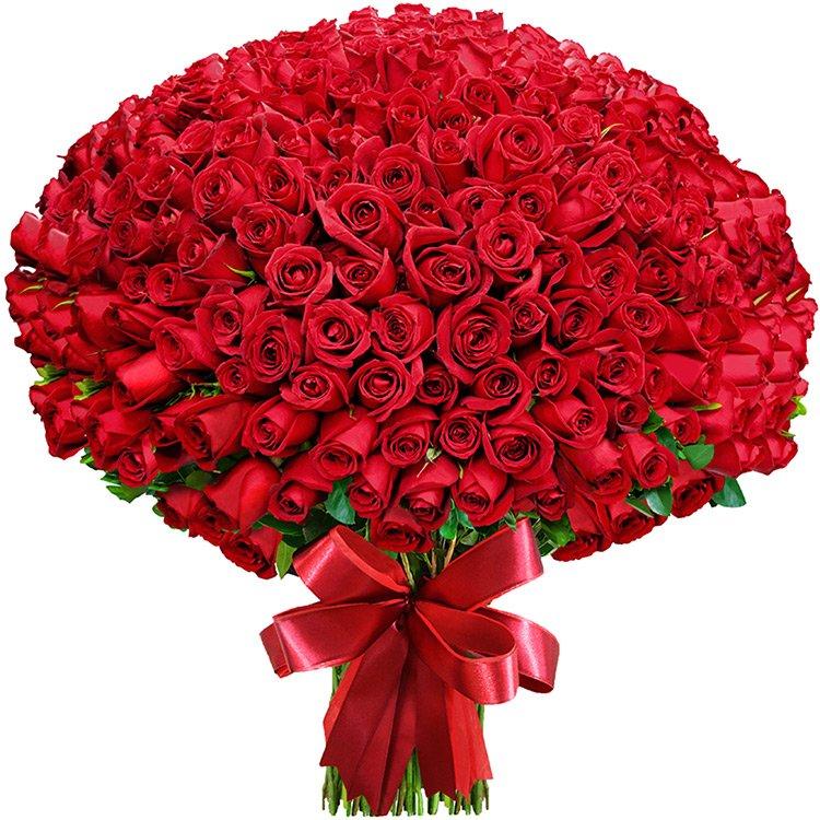 buquê de flores para namorada
