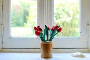 como plantar flores
