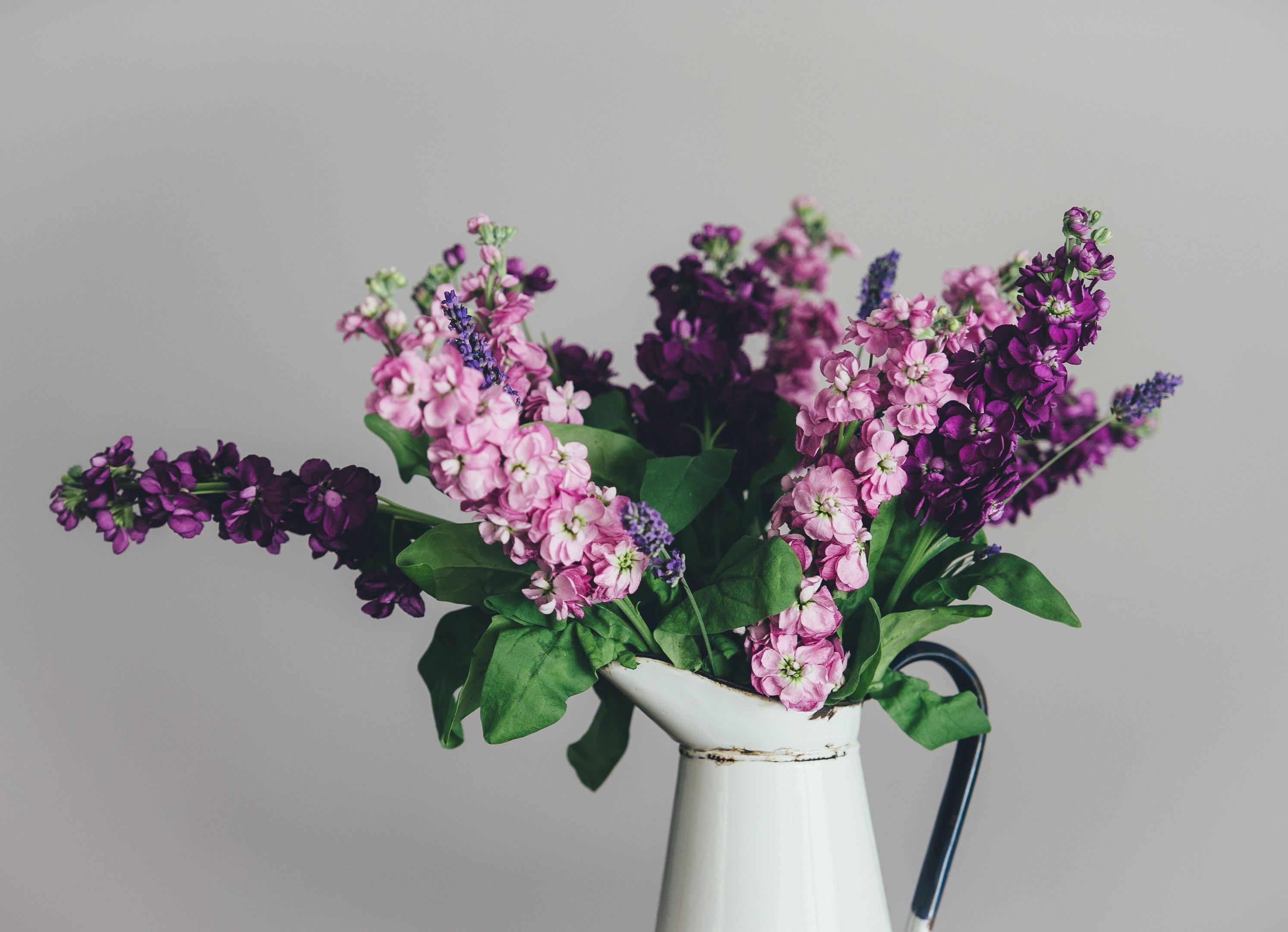As 5 Flores Mais Lindas Do Mundo Blog Giuliana Flores