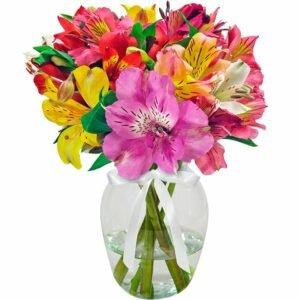 Presente para avó — Admiração Colorido no Vaso
