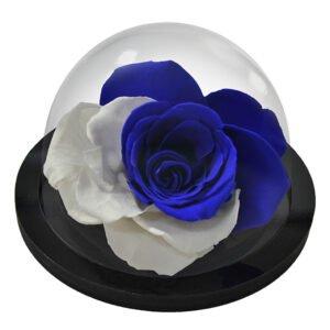 Globo de Rosa Encantada Blue Moon