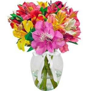 Admiração Colorida no Vaso