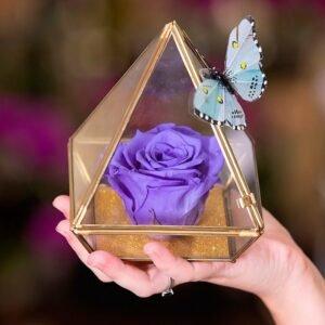Pirâmide da Rosa Encantada Azul