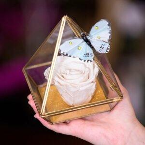 Pirâmide da Rosa Encantada Branca