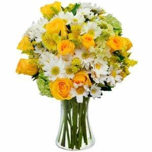 Flores & Vida Amarelo