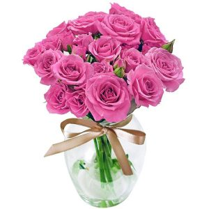 Contagiar de Rosas Purple no Vaso