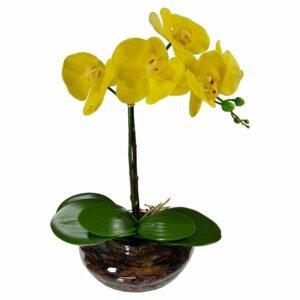 Orquidea Amarela Permanente