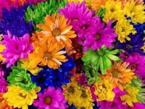 Flores tie dye coloridas