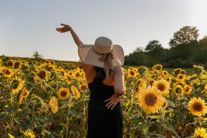 mulher em um campo de girassol
